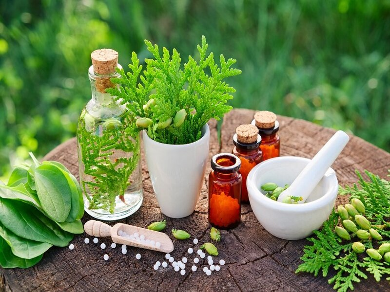 Wholesale Herbal Extracts Supplier