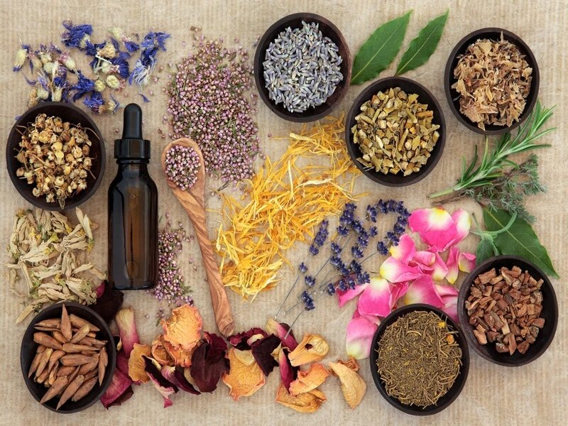 Herbal Product Distributor For Europe